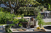 Herbs and vegetables on worksurface of outdoor kitchen
