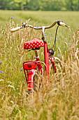 Red bike in the field