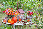 Autumn arrangement of zinnias, everlasting flowers and pumpkins
