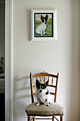 Dog sitting on chair with seat cushion below portrait of dog on wall
