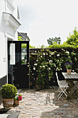 Romantic courtyard garden with a seating area and a rose bush on the wall
