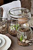 Flowers and egg shells in hay nests in jars