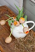 Bouquet of tulips encased in eggshells in jug