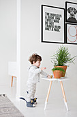 Little boy stood next to houseplants on stool
