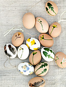 Easter eggs covered with pressed leaves, flowers, and feathers