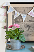 Pink gerbera daisy in metal bucket in front of drawing and bunting