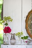 Rosen und Frauenmantel in nostalgischen Vasen und einer Tasse