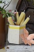 Aus Bienenwachsplatten gerollte Kerzen in wabenförmigem Utensilo