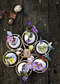 Eierhalter mit Frühlingsblumen in Eierschalen als Väschen
