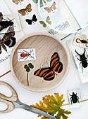 Insekten in Acryl, Buch mit Schmetterlingen und vierblättriges Kleeblatt