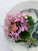 A bouquet of pink columbines and pink strawberry blossoms