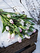 Bouquet of tulips on a wooden box in the snow