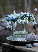 Wreath of grape hyacinths and snowdrops on a glass vase