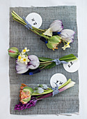 Tulips, daffodils, and grape hyacinths in small bunches