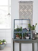 Frühbeet mit Frühlingsblumen auf halbrundem Konsolentisch unterm Wandteppich