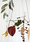 Hanging wreath with pressed leaves, twigs and dried berries
