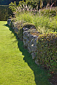 Stone wall covered with plants next to manicured lawn