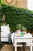 Set table in the backyard garden with wild wine against the wall