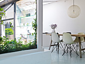 Shell chairs at the table in the dining room with white floors and windows