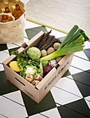 Frisches verschiedenes Gemüse in einer Biokiste auf Schachbrettboden