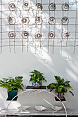 Plant stand below wall decoration made from wire springs on terrace