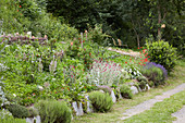 Natural-style herbaceous border in summer garden
