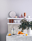 Marble counter with citrus press, oranges and leaf sprig in vase, shelves with clock and dishes in background