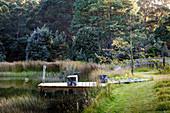 Steg zum See zwischen Wiesen und Wald im Sommer