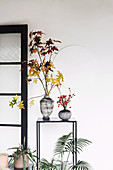 Branches with autumn leaves and rose hips in vases