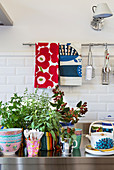 Potted herbs and colourful crockery on stainless steel kitchen worksurface