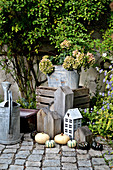 Autumn decoration with hydrangea, pumpkins and decorative elements
