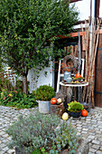 Autumn decoration in the courtyard with pumpkin, rose hips, hop tendril and chestnuts
