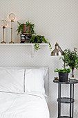 Houseplants on bedside table and on shelf above bed