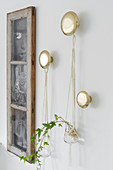 Ivy in macramé plant hangers hung from round golden pegs