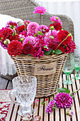 Bouquet of red and pink dahlias in a basket