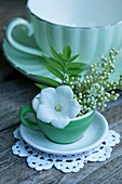Balloon flower and false spiraea flowers in green espresso cup