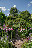 Cottage garden with peonies and currant, round paved area