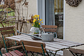 Early spring on the terrace with daffodils 'Tete a Tete' in a jar
