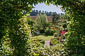 View through topiary hedge into garden