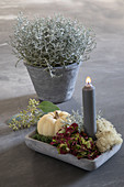Arrangement of pumpkin, hydrangeas and barbed wire plant with candle