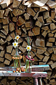Flowering narcissus in bottles of water with wreaths of onions in front of stacked firewood