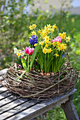 Wreath of twigs with colourful spring flowers in the middle