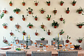 Set dining table in front of wall covered in plants in terracotta pots in wall brackets