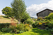 Rural garden with birch and herbaceous beds, seating area in the shade on a small terrace