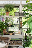 Vintage-style accessories on shelves in summery conservatory