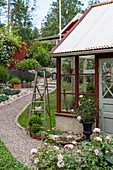 Gravel path leading to Falu-red greenhouse in summery garden