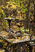 Rustic metal ornaments on old table in autumnal garden