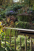 Pond with wooden bridge and shrubs in late summer garden