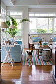 Dog in exotic living room with pale blue sofa and glass wall