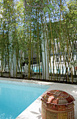 Pool and row of trees